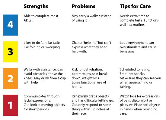 Modified Allen Cognitive Levels